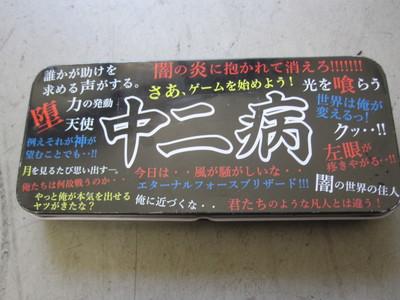 IMG_5041.JPG